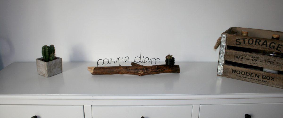 décoration carpe diem aluminium bois et plante grasse